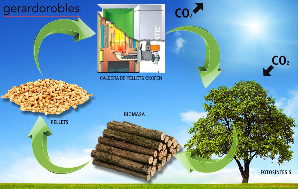 Biomasa Asturias